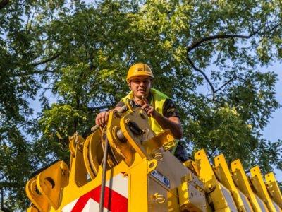 Mitarbeiter auf Kran schaut runter Helm Bäume